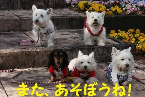 Photo_23